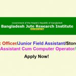 Bangladesh Jute Research Institute BJRI Auditor Job Circular 2020, Teletalk Apply Online.